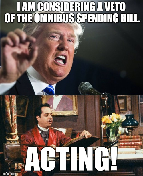 A brilliant performance | I AM CONSIDERING A VETO OF THE OMNIBUS SPENDING BILL. ACTING! | image tagged in donald trump | made w/ Imgflip meme maker