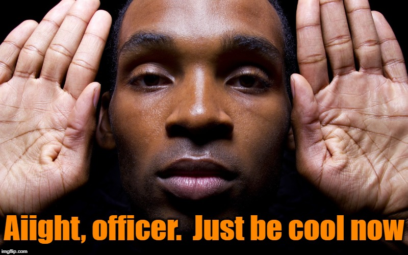 Aiight, officer.  Just be cool now | made w/ Imgflip meme maker