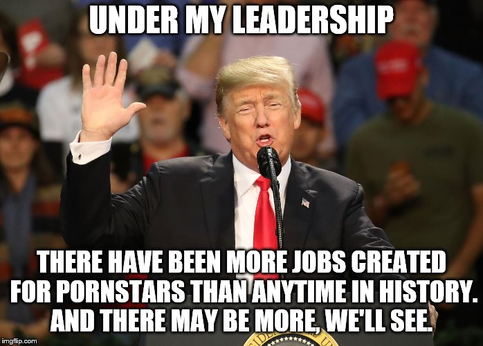 Under my leadership - More jobs for pornstars | UNDER MY LEADERSHIP THERE HAVE BEEN MORE JOBS CREATED FOR PORNSTARS THAN ANYTIME IN HISTORY. AND THERE MAY BE MORE, WE'LL SEE. | image tagged in trump,donald trump,pornstars,stormy daniels,trump is a whiny little bitch | made w/ Imgflip meme maker