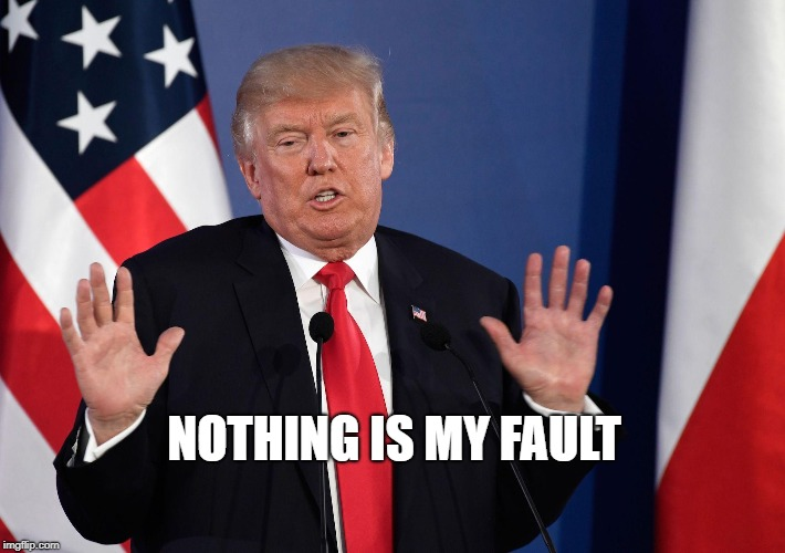 Trump Not Me | NOTHING IS MY FAULT | image tagged in trump not me | made w/ Imgflip meme maker