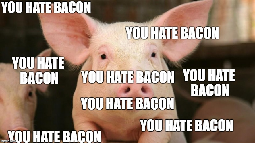 Telling you what to like | YOU HATE BACON YOU HATE BACON YOU HATE BACON YOU HATE BACON YOU HATE BACON YOU HATE BACON YOU HATE BACON YOU HATE BACON | image tagged in propaganda,pig,politics,iwanttobebacon,bacon | made w/ Imgflip meme maker