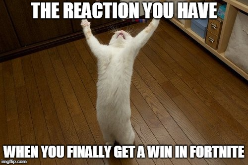 Fortnite reaction | THE REACTION YOU HAVE WHEN YOU FINALLY GET A WIN IN FORTNITE | image tagged in cat victory,fortnite,memes | made w/ Imgflip meme maker