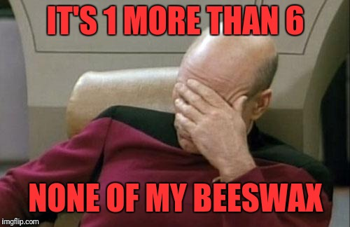 Captain Picard Facepalm Meme | IT'S 1 MORE THAN 6 NONE OF MY BEESWAX | image tagged in memes,captain picard facepalm | made w/ Imgflip meme maker