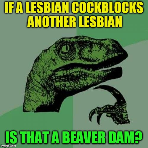 Philosoraptor Meme | IF A LESBIAN COCKBLOCKS ANOTHER LESBIAN IS THAT A BEAVER DAM? | image tagged in memes,philosoraptor | made w/ Imgflip meme maker