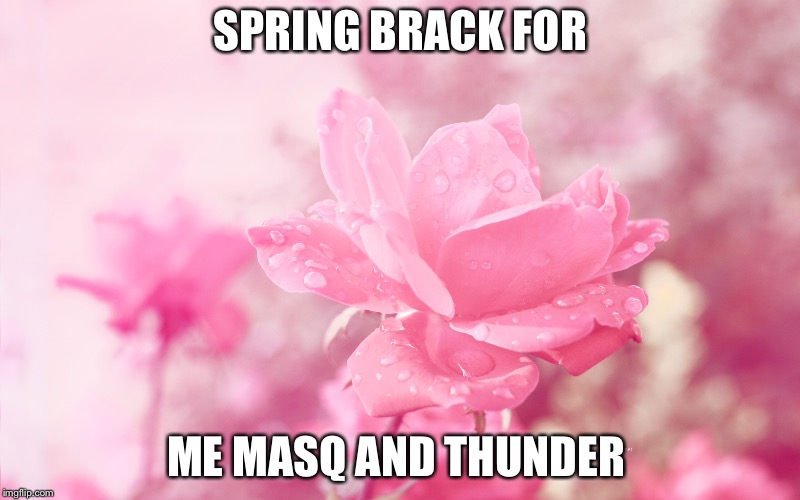 SPRING BRACK FOR ME MASQ AND THUNDER | image tagged in happy,spring break | made w/ Imgflip meme maker