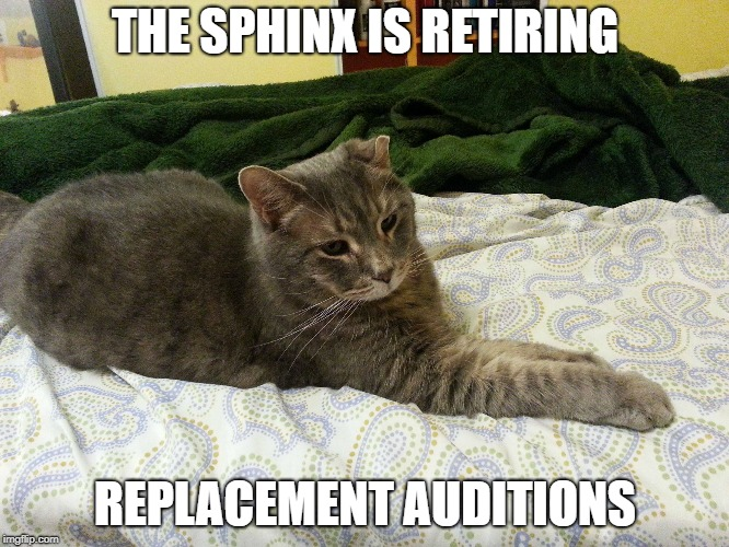 Replacement Sphinx Auditions | THE SPHINX IS RETIRING REPLACEMENT AUDITIONS | image tagged in cat,the great sphinx | made w/ Imgflip meme maker