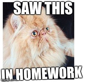 Cat | SAW THIS IN HOMEWORK | image tagged in memes,cats | made w/ Imgflip meme maker