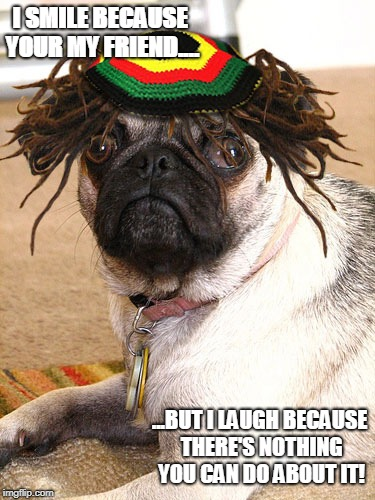 funny friends meme | I SMILE BECAUSE YOUR MY FRIEND.... ...BUT I LAUGH BECAUSE THERE'S NOTHING YOU CAN DO ABOUT IT! | image tagged in rasta pug | made w/ Imgflip meme maker