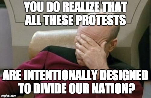 Captain Picard Facepalm Meme | YOU DO REALIZE THAT ALL THESE PROTESTS ARE INTENTIONALLY DESIGNED TO DIVIDE OUR NATION? | image tagged in memes,captain picard facepalm | made w/ Imgflip meme maker