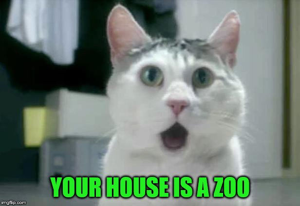 YOUR HOUSE IS A ZOO | made w/ Imgflip meme maker