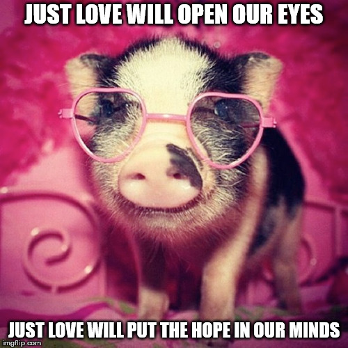 DMB Pig | JUST LOVE WILL OPEN OUR EYES JUST LOVE WILL PUT THE HOPE IN OUR MINDS | image tagged in dmb,dave matthews band,pig,just love will open our eyes,love,heart glasses | made w/ Imgflip meme maker