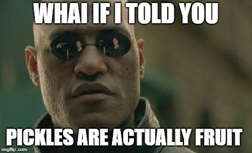 Matrix Morpheus Meme | WHAI IF I TOLD YOU PICKLES ARE ACTUALLY FRUIT | image tagged in memes,matrix morpheus | made w/ Imgflip meme maker