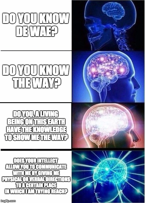 When the scholar wants in on the memes. | DO YOU KNOW DE WAE? DO YOU KNOW THE WAY? DO YOU, A LIVING BEING ON THIS EARTH HAVE THE KNOWLEDGE TO SHOW ME THE WAY? DOES YOUR INTELLECT ALL | image tagged in memes,expanding brain | made w/ Imgflip meme maker
