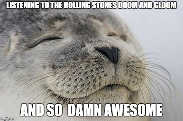 Satisfied Seal Meme | LISTENING TO THE ROLLING STONES DOOM AND GLOOM AND SO  DAMN AWESOME | image tagged in memes,satisfied seal | made w/ Imgflip meme maker