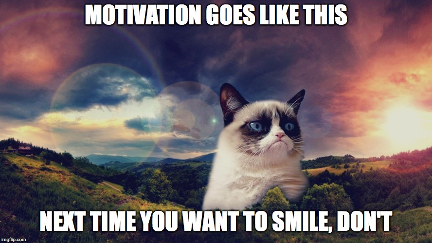 motivational grumpy cat | MOTIVATION GOES LIKE THIS NEXT TIME YOU WANT TO SMILE, DON'T | image tagged in motivational grumpy cat | made w/ Imgflip meme maker