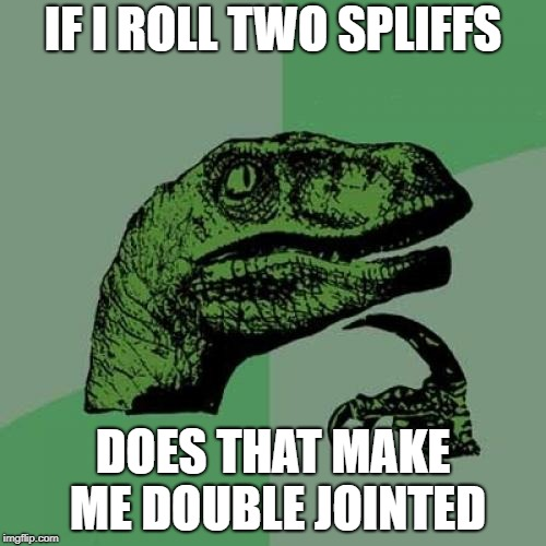 Philosoraptor Meme | IF I ROLL TWO SPLIFFS DOES THAT MAKE ME DOUBLE JOINTED | image tagged in memes,philosoraptor | made w/ Imgflip meme maker