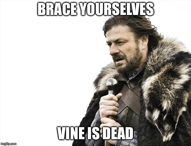 Brace Yourselves X is Coming Meme | BRACE YOURSELVES VINE IS DEAD | image tagged in memes,brace yourselves x is coming | made w/ Imgflip meme maker
