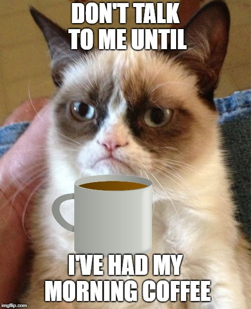 DON'T TALK TO ME UNTIL I'VE HAD MY MORNING COFFEE | made w/ Imgflip meme maker