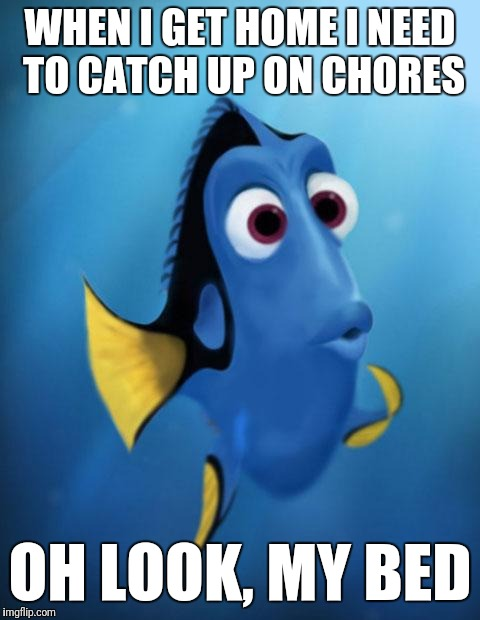 Dory | WHEN I GET HOME I NEED TO CATCH UP ON CHORES OH LOOK, MY BED | image tagged in dory | made w/ Imgflip meme maker