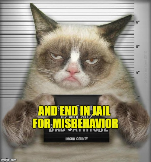 AND END IN JAIL FOR MISBEHAVIOR | made w/ Imgflip meme maker
