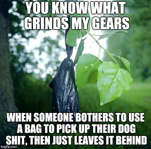 Take it or just let it rot naturally | YOU KNOW WHAT GRINDS MY GEARS WHEN SOMEONE BOTHERS TO USE A BAG TO PICK UP THEIR DOG SHIT, THEN JUST LEAVES IT BEHIND | image tagged in dog poop | made w/ Imgflip meme maker
