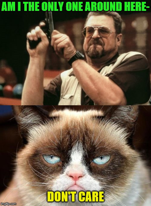 At least let him finish the sentence! | AM I THE ONLY ONE AROUND HERE- DON'T CARE | image tagged in memes,am i the only one around here,grumpy cat not amused | made w/ Imgflip meme maker