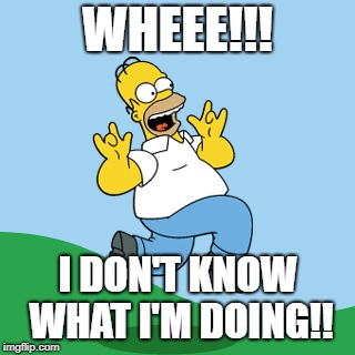 Homer Prancing | WHEEE!!! I DON'T KNOW WHAT I'M DOING!! | image tagged in homer simpson | made w/ Imgflip meme maker