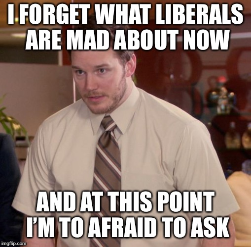 Afraid To Ask Andy Meme | I FORGET WHAT LIBERALS ARE MAD ABOUT NOW AND AT THIS POINT I'M TO AFRAID TO ASK | image tagged in memes,afraid to ask andy | made w/ Imgflip meme maker