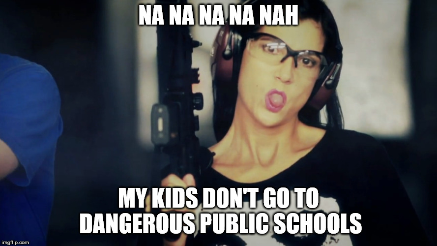 Dana Loesch | NA NA NA NA NAH MY KIDS DON'T GO TO DANGEROUS PUBLIC SCHOOLS | image tagged in nra,dana loesch,entitled,gun nut | made w/ Imgflip meme maker