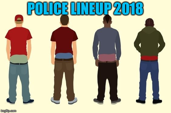 I spared you the plumber butts. | POLICE LINEUP 2018 | image tagged in funny,memes,police,lineup | made w/ Imgflip meme maker