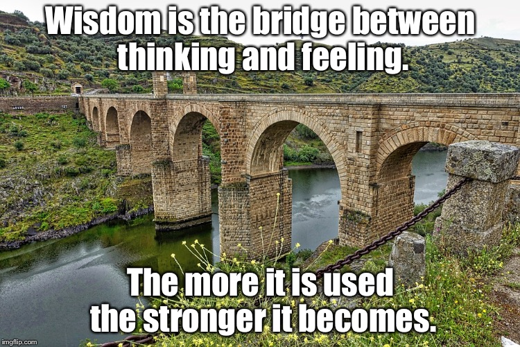 Wisdom is the bridge between thinking and feeling. The more it is used the stronger it becomes. | image tagged in roman bridge | made w/ Imgflip meme maker