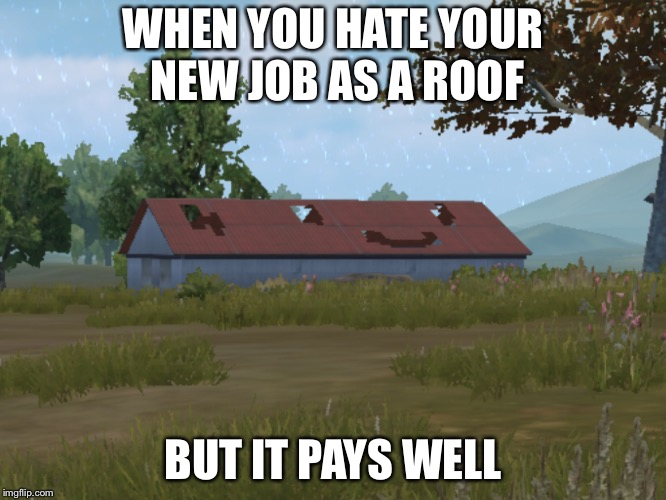 Roof job | WHEN YOU HATE YOUR NEW JOB AS A ROOF BUT IT PAYS WELL | image tagged in pubg,roof | made w/ Imgflip meme maker