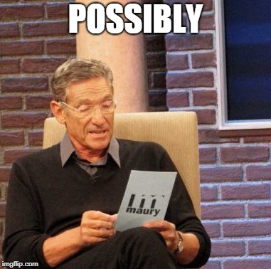 Maury Lie Detector Meme | POSSIBLY | image tagged in memes,maury lie detector | made w/ Imgflip meme maker