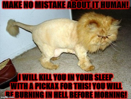 MAKE NO MISTAKE ABOUT IT HUMAN! I WILL KILL YOU IN YOUR SLEEP WITH A PICKAX FOR THIS! YOU WILL BE BURNING IN HELL BEFORE MORNING! | image tagged in die human | made w/ Imgflip meme maker