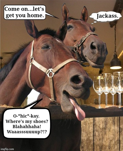 Drunken Horse. This template I made for a friend who just had a Birthday. Love to see your ideas, and feedback. Do you like it? | Come on...let's get you home. O-*hic*-kay. Where's my shoes? Blahahhaha! Waaasssuuuup?!? Jackass. | image tagged in drunken horse,my memes are dopest,animal memes,funny memes | made w/ Imgflip meme maker