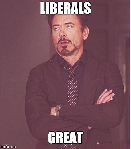 Face You Make Robert Downey Jr Meme | LIBERALS GREAT | image tagged in memes,face you make robert downey jr | made w/ Imgflip meme maker