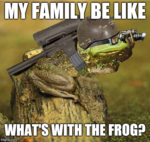 Death to Normies! | MY FAMILY BE LIKE WHAT'S WITH THE FROG? | image tagged in kek,kekistan,meme war,pepe the frog,funny meme | made w/ Imgflip meme maker