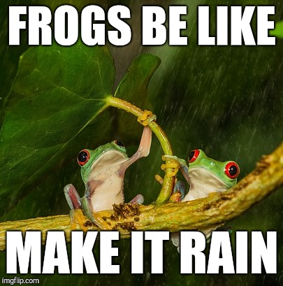 Frogs be like... | FROGS BE LIKE MAKE IT RAIN | image tagged in make it rain,kek,pepe the frog,frogs,political meme,umbrella | made w/ Imgflip meme maker