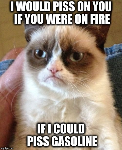 Grumpy Cat Meme | I WOULD PISS ON YOU IF YOU WERE ON FIRE IF I COULD PISS GASOLINE | image tagged in memes,grumpy cat | made w/ Imgflip meme maker