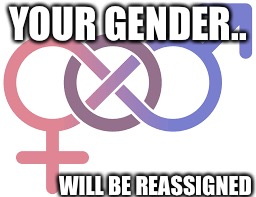 YOUR GENDER.. WILL BE REASSIGNED | made w/ Imgflip meme maker