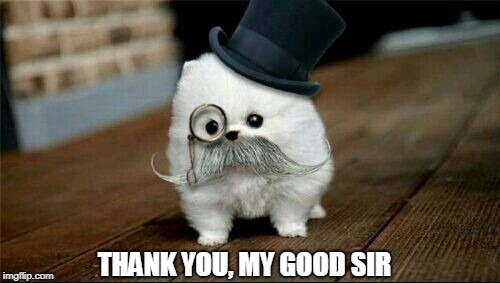 Sophisticated Dog | THANK YOU, MY GOOD SIR | image tagged in sophisticated dog | made w/ Imgflip meme maker