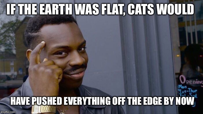 Roll Safe Think About It Meme | IF THE EARTH WAS FLAT, CATS WOULD HAVE PUSHED EVERYTHING OFF THE EDGE BY NOW | image tagged in memes,roll safe think about it | made w/ Imgflip meme maker