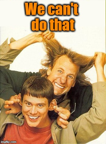 DUMB and dumber | We can't do that | image tagged in dumb and dumber | made w/ Imgflip meme maker