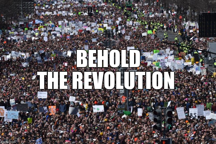 march for our lives | BEHOLD THE REVOLUTION | image tagged in memes | made w/ Imgflip meme maker