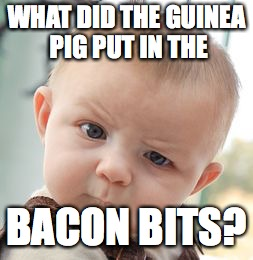 Skeptical Baby Meme | WHAT DID THE GUINEA PIG PUT IN THE BACON BITS? | image tagged in memes,skeptical baby | made w/ Imgflip meme maker
