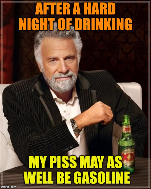 The Most Interesting Man In The World Meme | AFTER A HARD NIGHT OF DRINKING MY PISS MAY AS WELL BE GASOLINE | image tagged in memes,the most interesting man in the world | made w/ Imgflip meme maker