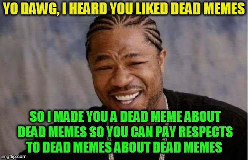 Dead memes week! A thecoffeemaster and SilicaSandwhich event! (March 23-29) | YO DAWG, I HEARD YOU LIKED DEAD MEMES SO I MADE YOU A DEAD MEME ABOUT DEAD MEMES SO YOU CAN PAY RESPECTS TO DEAD MEMES ABOUT DEAD MEMES | image tagged in memes,yo dawg heard you,dead memes week,dead memes,silicasandwhich,thecoffeemaster | made w/ Imgflip meme maker