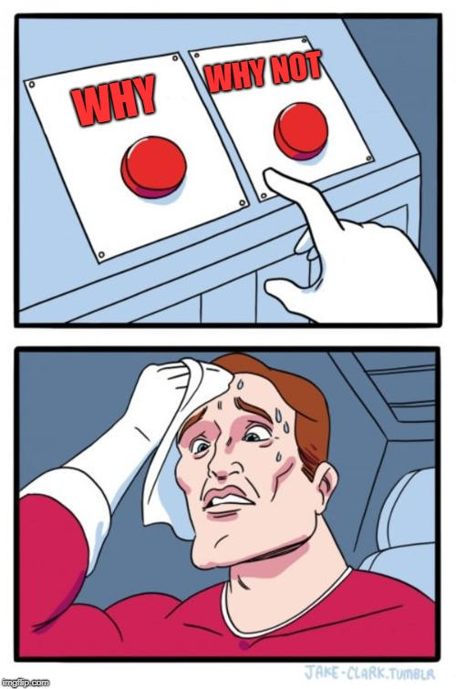 Two Buttons Meme | WHY WHY NOT | image tagged in memes,two buttons | made w/ Imgflip meme maker