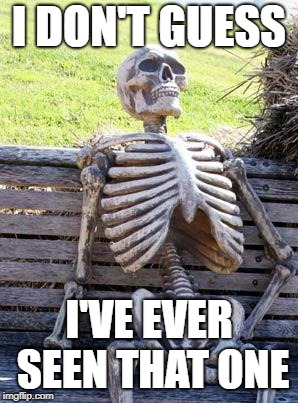 Waiting Skeleton Meme | I DON'T GUESS I'VE EVER SEEN THAT ONE | image tagged in memes,waiting skeleton | made w/ Imgflip meme maker