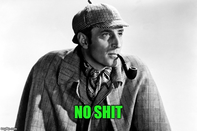 No doy. | NO SHIT | image tagged in sherlock holmes | made w/ Imgflip meme maker